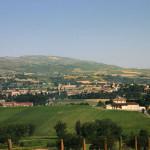 Cantine Adanti - Panoramica