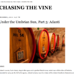 Chasing the wine