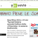 Slow Wine 2021, i 23 vini Top dell'Umbria secondo l'editore della Chiocciola in scena la biodiversità
